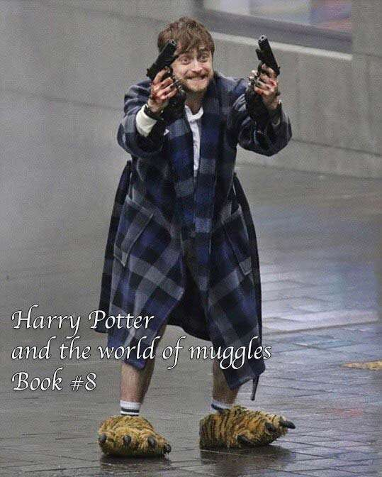Harry Potter and the world of muggles - Book 8