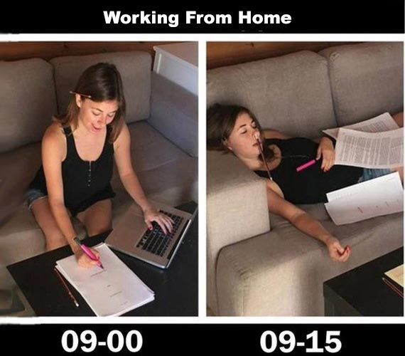 work from home public health